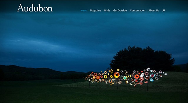 'Birds Watching' from 'Indicators: Artists On Climate Change' at Storm King featured on the homepage of Audubon.org