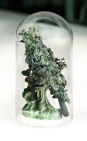 Porcelain bird figurine covered in lichen by environmentalist artist Jenny Kendler