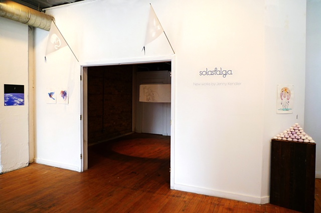 Solastalgia Installation View
