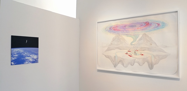 Installation view of 'Narwhal, Spacewalk' & 'Sanctuary (Narwhals)'