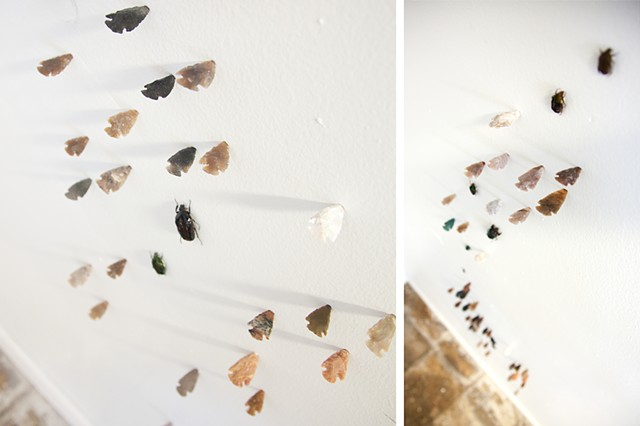 Encrustation (Arrowheads & Beetles)