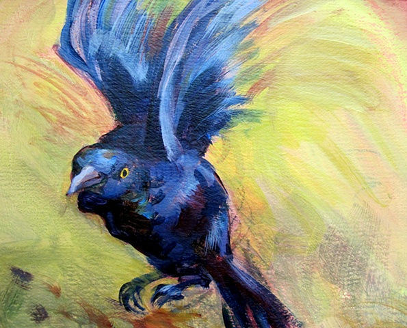 Acrylic painting of a grackle