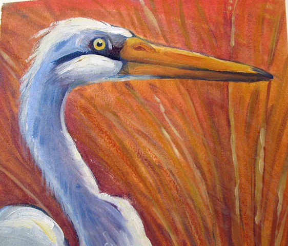 Great Egret: Detail from Wading Birds of Uganda