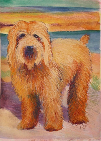 Water colour and pastel painting of a wheaton terrier mix