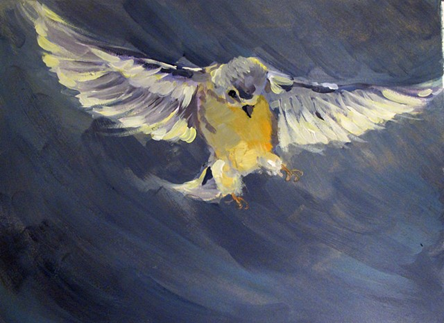 Goldfinch flight