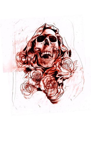 skull and flowers sketch