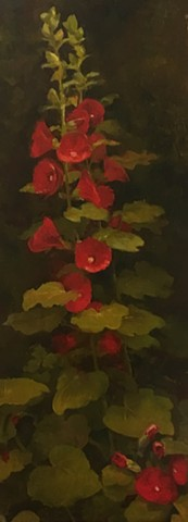 Hollyhocks with Black Background