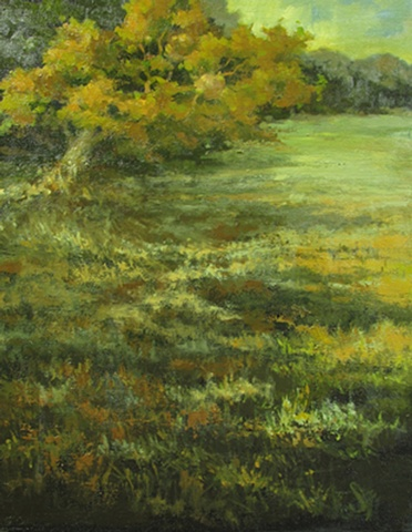 Painted at the Overland Park Arboretum at their annual Stems plein air event