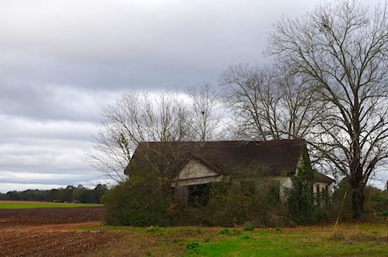 Abandoned Farmhouse. Colomokee, GA.