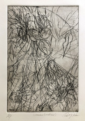 Aquatint Etching