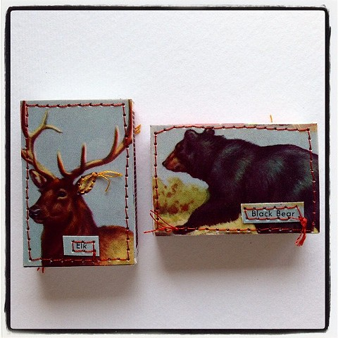 Elk & Black Bear~