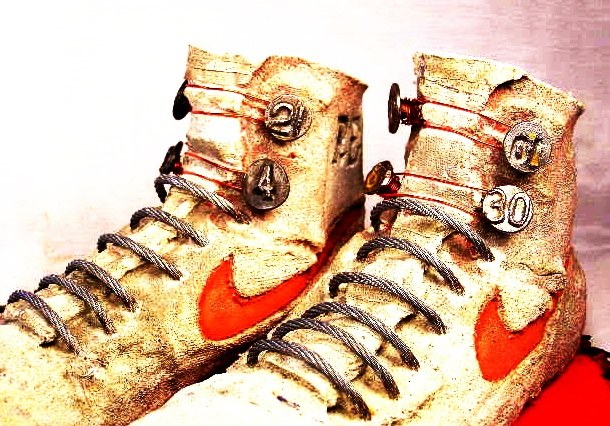 Reese's Nike Kicks/home com.delivered 9/22/2012 $300. Liza Graves mom