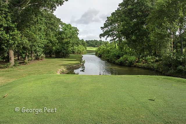 9th hole _ Forest Course _The Clubs of Kingwood, TX