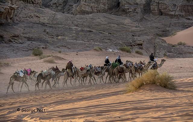 Wadi Rum _ 3542