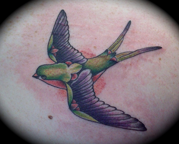 Green Swallow