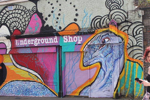 Waterford Walls festival (Artist collab with Ciara McKenna)