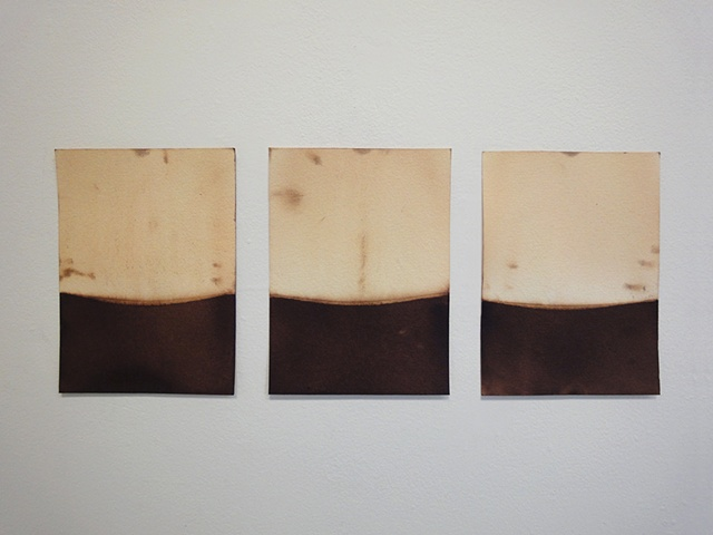 Parch series (installation view)