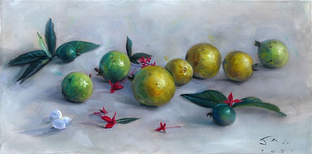 Guavas, Ixoras, and Periwinkle