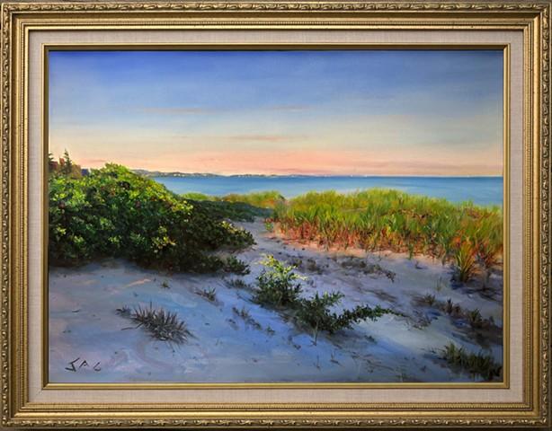 Beach Grass at Long Beach
