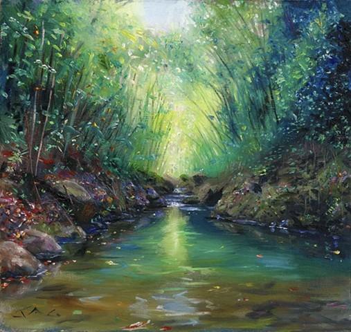 Forest Stream 2