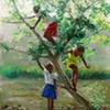 Guava Tree 2
