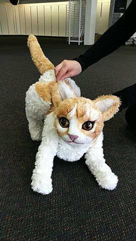 cat puppet for Terrapin