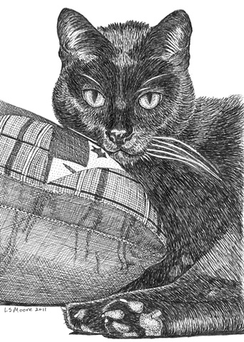 A pen and ink drawing of a black cat by Leslie Moore.