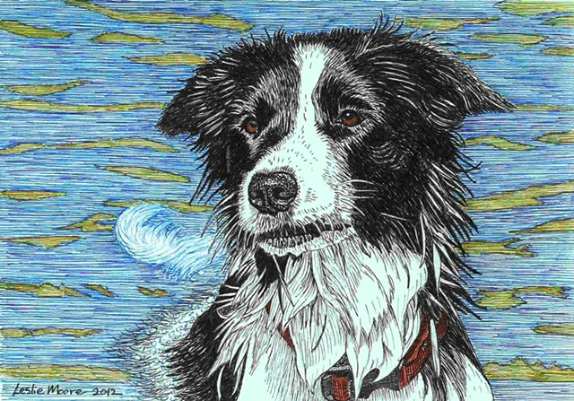 A colored pen-and-ink drawing of a Border collie/Australian blue heeler mix by Leslie Moore of PenPets.