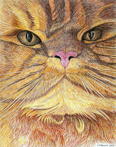 A colored pen and ink drawing of a an orange Persian cat by Leslie Moore.