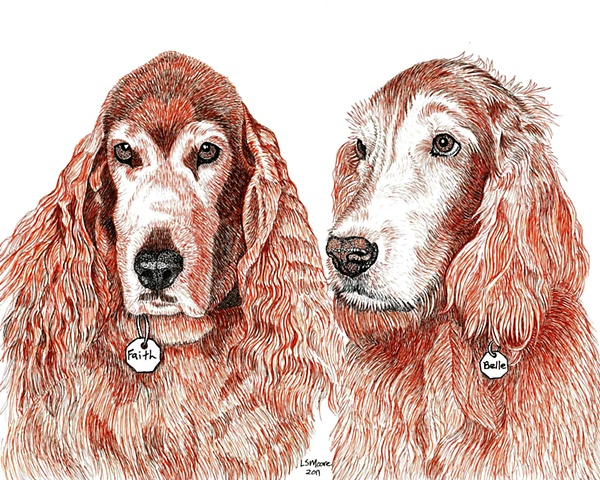 A colored pen and ink drawing of two Irish setters by Leslie Moore.