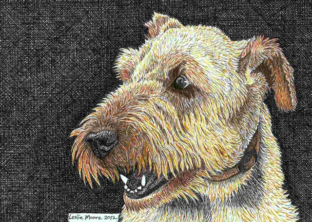 A colored pen-and-ink drawing of an Airedale Terrier by Leslie Moore of PenPets.