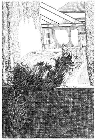 A pen and ink drawing of a long-haired grey cat sitting on a windowsill by Leslie Moore.
