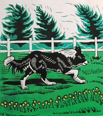 a multi-color woodcut of a border collie running alongside a fence in a green field by Leslie Moore of PenPets