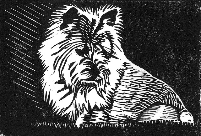 A linocut of a Norwich terrier by Leslie Moore of PenPets