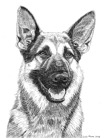 pen-and-ink drawing, dog drawing, German Shepherd, dog art, PenPets, Leslie Moore