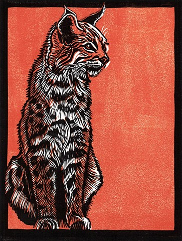 a chiaroscuro linocut of a bobcat by Leslie Moore of PenPets