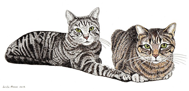 a colored pen and ink drawing of two tiger-striped cats by Leslie Moore of PenPets