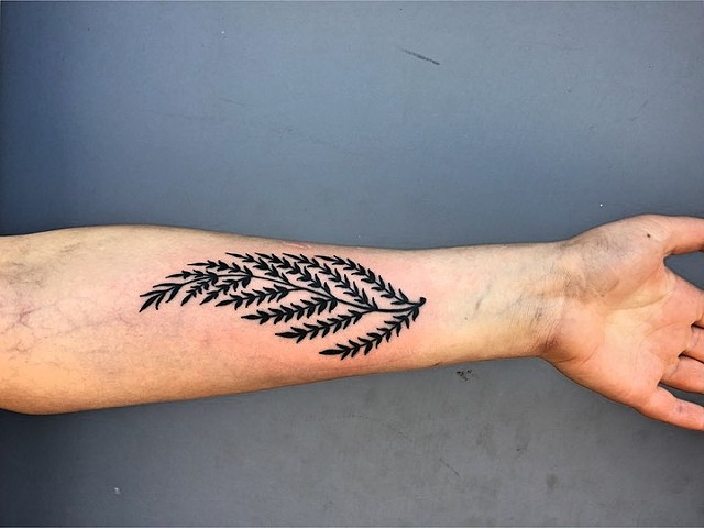 Fern tattoo by Kc Carew at Gold Standard Tattoo in Bend, OR.
