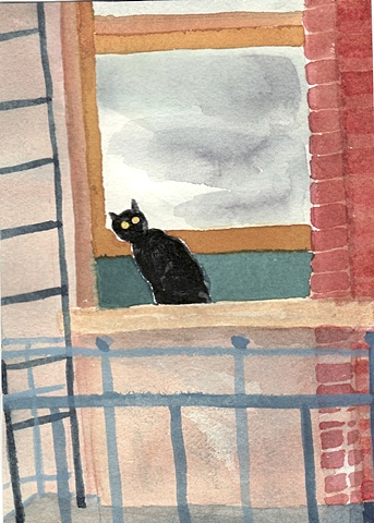 A black cat peers curiously out a window in a San Francisco apartment.