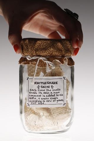 Rattlesnake Skin