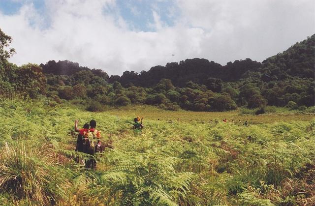 Mt. Kyejo