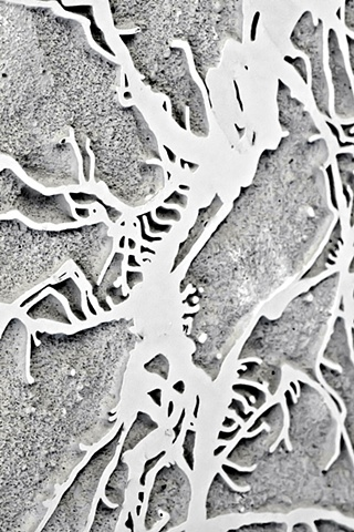 Dendritic Detail