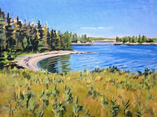 Nina Jerome, The Turtle Gallery, Deer Isle, Maine, Artwork
