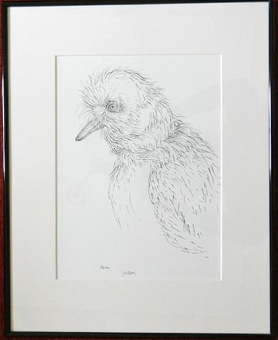 Jacqueline S. Wilson Jackie Wilson Maine artist print pen and ink drawing on paper Shrike Turtle Gallery Weeping Skimmer