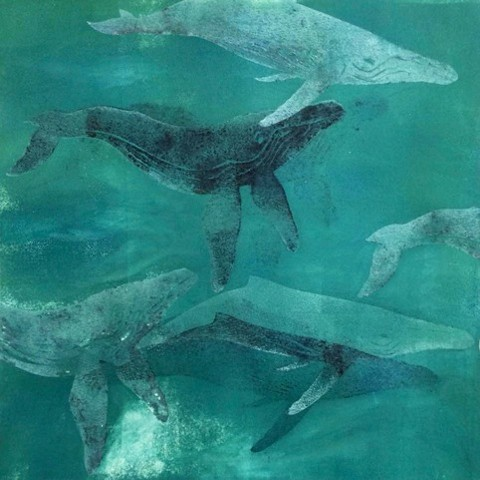 Sally Brophy, artist, Turtle Gallery, Deer Isle, Maine, woodcut, print, stonington, blue hill, bar harbor, ellsworth
