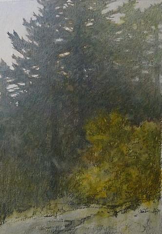 Sandy Wadlington, artist, prints, Turtle Gallery, Deer Isle, Maine, Stonington, Blue Hill, Bar Harbor, Ellsworth