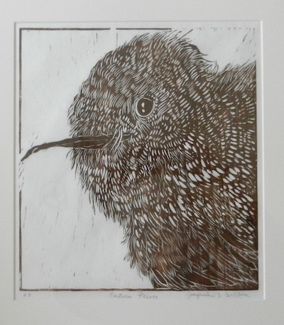Jacqueline S. Wilson Jackie Wilson Eastern Pewee print woodcut Turtle Gallery