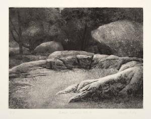 Vaino Kola print Rocks series No. 4 Turtle Gallery Maine