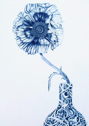 Indigo pencil drawing. Poppy.Poppies