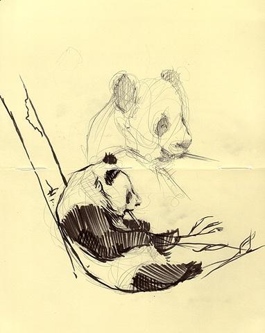 Zoo Sketches III